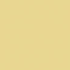 RAL 1015 - Hellelfenbein / Polyester