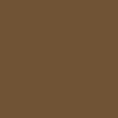 RAL 1036 - Perlgold Metallic / Polyester